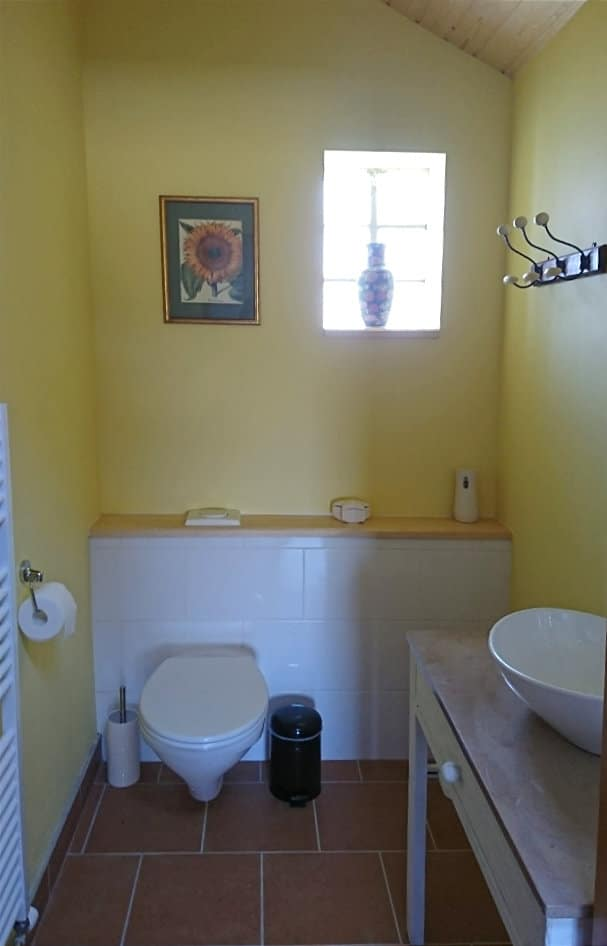 Downstairs toilette